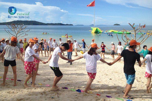 to-chuc-team-building-dolphin-vietwind-team-building-6