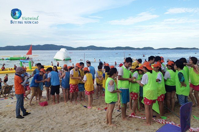 to-chuc-team-building-dolphin-vietwind-team-building-9